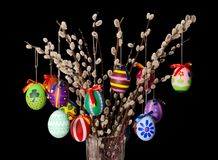 Colored easter eggs on willow bouquet on black background Stock Photography