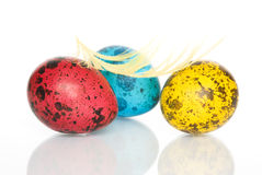 Colored Easter Quail Eggs Stock Photography