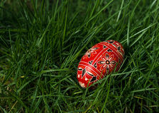 Colored Egg In The Grass Stock Photography
