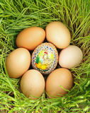 Colored egg between unpainted eggs Royalty Free Stock Image