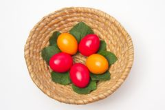Colored eggs in basket Stock Images