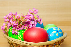 Colored  eggs in basket Royalty Free Stock Images