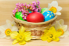Colored  eggs in basket Stock Photo