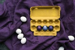 Colored eggs in egg carton and white eggs Royalty Free Stock Photo