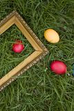 Colored eggs and frame Stock Photography