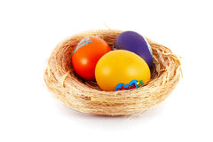 Colored eggs in nest Stock Images