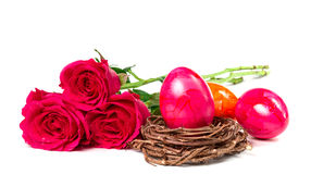 colored eggs and nest Stock Image