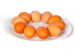 Colored eggs on a plate Royalty Free Stock Photo