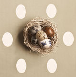 Colored Eggs In A Small Nest. Small nest containing colored eggs over a Easter concept background Royalty Free Stock Image