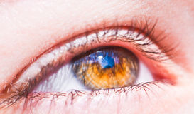 Colored eye Royalty Free Stock Images