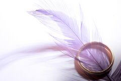 Colored feather Stock Photo