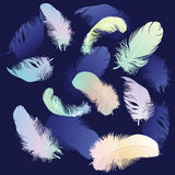 Colored Feather Set Royalty Free Stock Image