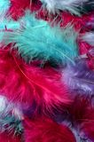 Colored feathers background Royalty Free Stock Images
