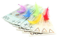 Colored feathers and banknotes on white background Royalty Free Stock Images