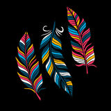 Colored Feathers in a flat style. Isolated on a black background. Royalty Free Stock Photography