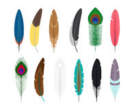 Colored feathers icons Stock Images