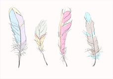 4 Colored feathers. Vector drawing of 4 colored delicate feathers Stock Photo
