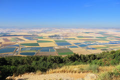 The colored fields of the valley of Galilee Stock Photos