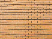 Colored fine brick wall Stock Photography