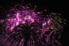 Colored fireworks during the night. Stock Image