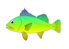 Colored fish Royalty Free Stock Photos