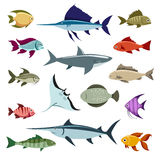 Colored fish vector icons. Set on white background Royalty Free Stock Image