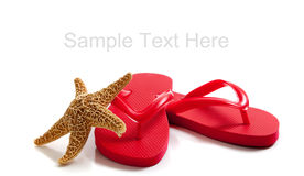 Colored flipflops on a white background. Red flipflops and a starfish on a white background with copy space stock image