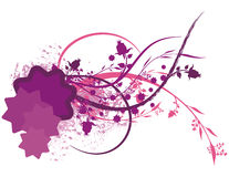 Colored Floral Background Stock Images