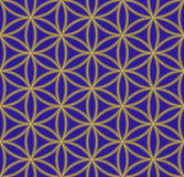 Colored flower of life sacred geometry pattern Stock Images