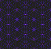 Colored flower of life sacred geometry pattern Royalty Free Stock Photo