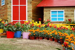 Colored flowers around the cottages Royalty Free Stock Image