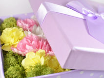 Colored flowers in lavender box Royalty Free Stock Photos