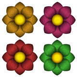 Colored flowers with a velvet texture. Royalty Free Stock Photo
