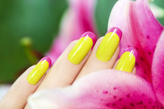 Colored French manicure . Stock Images