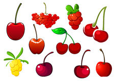 Colored fresh berry icons set Stock Image