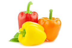 Colored Fresh Peppers / Paprika / Isolated Royalty Free Stock Photos