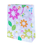 Colored gift bag Royalty Free Stock Photo