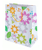 Colored gift bag Royalty Free Stock Image