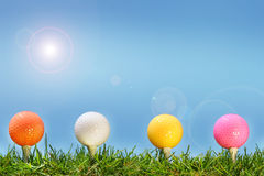 Colored golf balls in the gras Stock Images