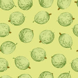 Colored gooseberries seamless pattern Stock Images