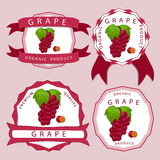 The colored grape. Vector illustration logo for whole ripe fruit colored grape with green stem leaf cut sliced. Grape drawing pattern consisting of tag label bow Stock Image