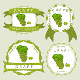 The colored grape. Vector illustration logo for whole ripe fruit colored grape with green stem leaf cut sliced. Grape drawing pattern consisting of tag label bow Royalty Free Stock Photography
