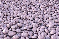 Colored gravel Stock Images