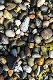 Colored gravel pebbles. Close up royalty free stock photos