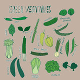 Colored green vegetables. Hand drawn objects with white outline on brown background. Vector illustration.  Royalty Free Stock Photos