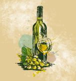 Colored hand drawing wine still life Royalty Free Stock Photos