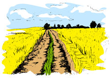 Colored hand sketch dirt road Royalty Free Stock Images