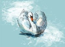 Colored hand sketch floating swans Stock Photography