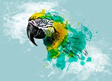 Colored hand sketch head ara on a grunge background Royalty Free Stock Photo
