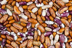 Haricot bean close background with high resolution. Colored haricot beans closeup on a background, top view, beans background Royalty Free Stock Image